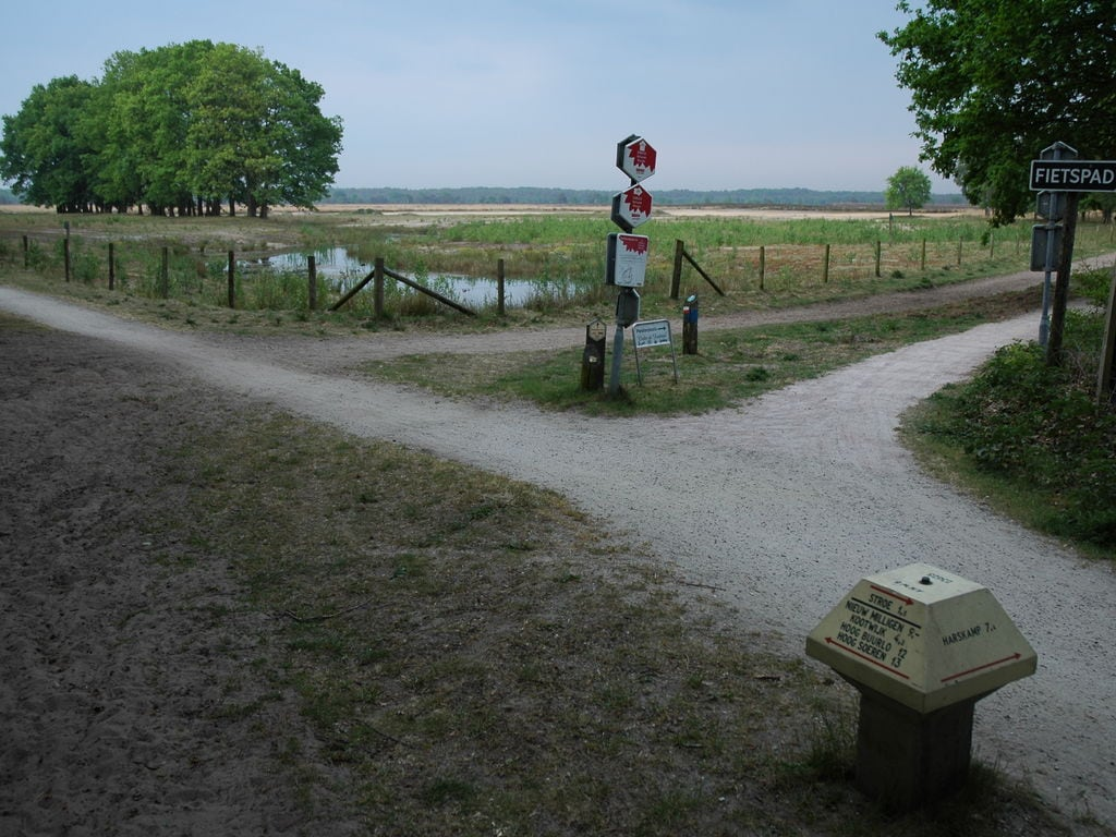 Ferienhaus Landgoed De IJsvogel 7 (2511704), Voorthuizen, Veluwe, Gelderland, Niederlande, Bild 31