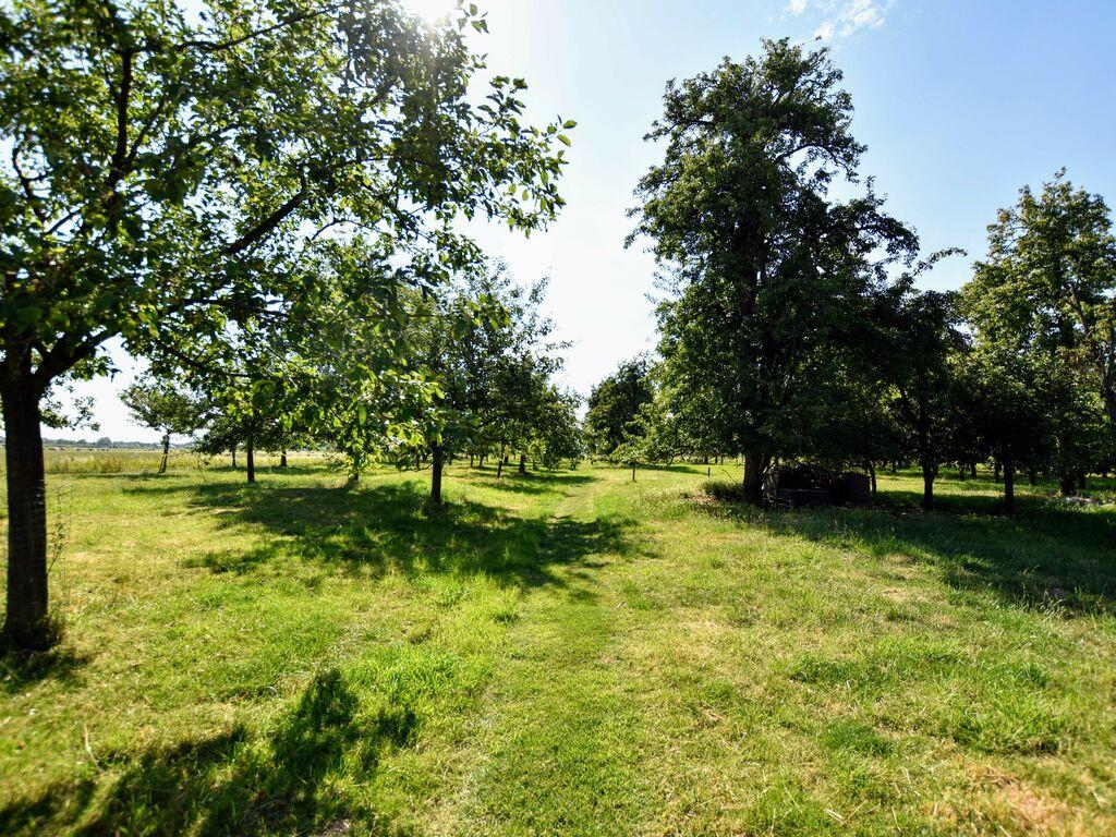 Ferienhaus Boomgaard (2643482), Herveld, Arnheim-Nimwegen, Gelderland, Niederlande, Bild 33