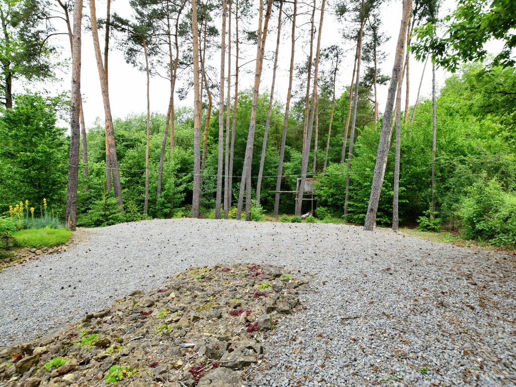 Ferienhaus  (2633028), Barvaux, Luxemburg (BE), Wallonien, Belgien, Bild 28