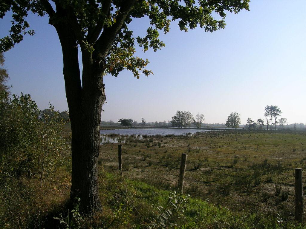 Ferienwohnung Baalse Hei 2 (2542384), Turnhout, Antwerpen, Flandern, Belgien, Bild 23