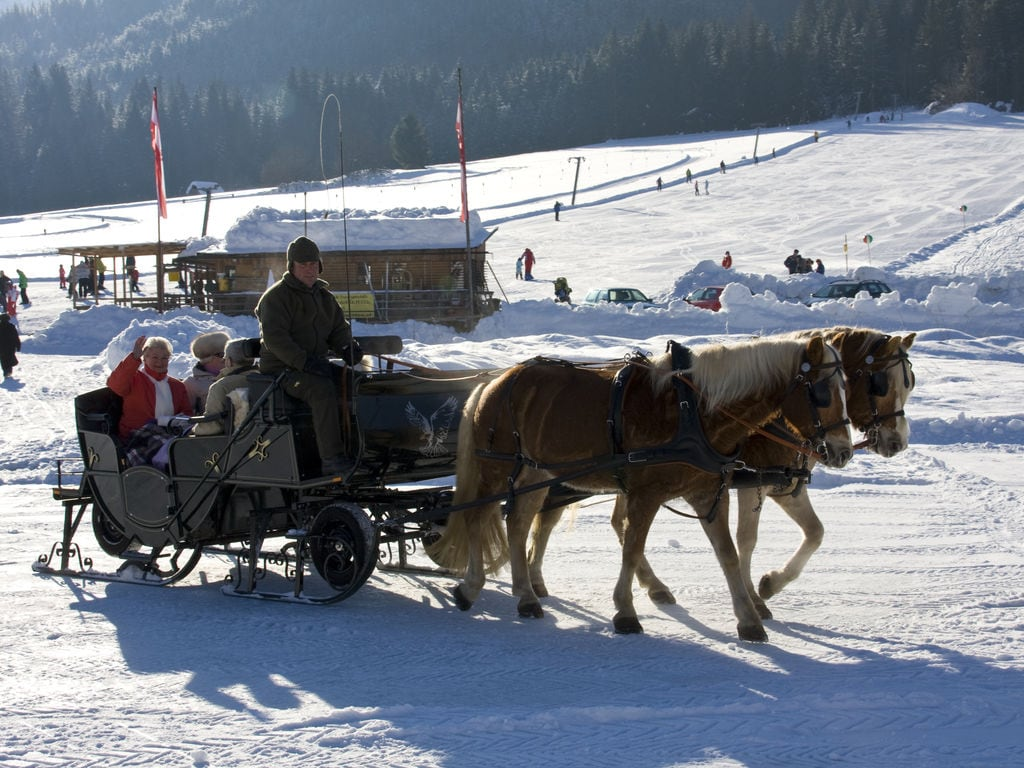 Maison de vacances Nassfeld Holiday Parcs (2534467), Jenig, Naturarena Kärnten, Carinthie, Autriche, image 34