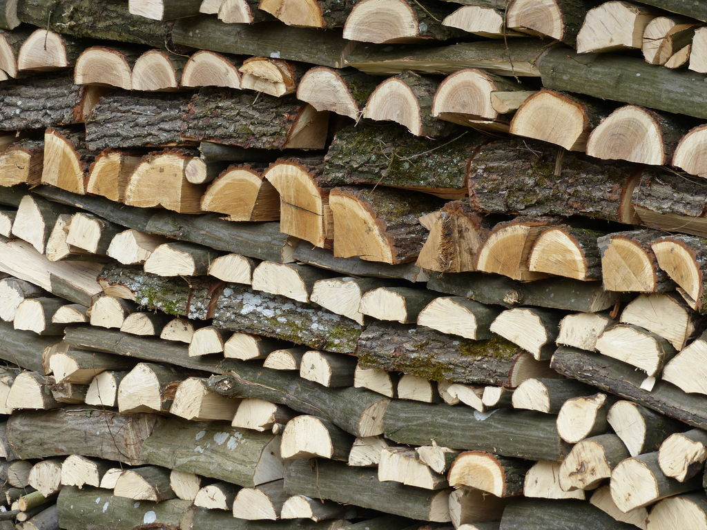 Ferienhaus Bois Joli (2567695), Beauraing, Namur, Wallonien, Belgien, Bild 40