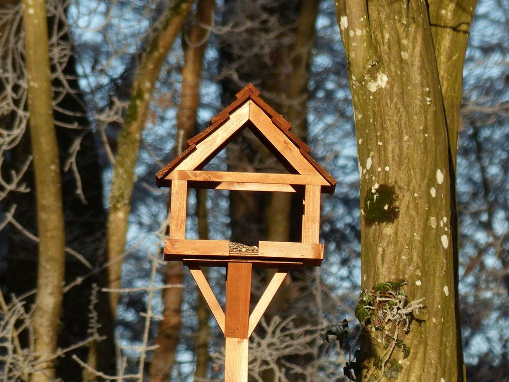 Ferienhaus Bois Joli (2567695), Beauraing, Namur, Wallonien, Belgien, Bild 39
