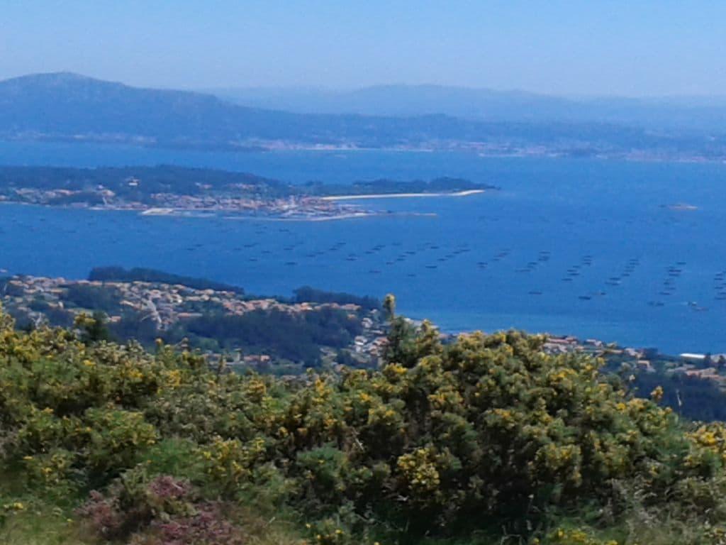 Ferienwohnung Großzügige Ferienwohnung mit Terrasse in Galicien (2557984), Portonovo, Rias Bajas, Galicien, Spanien, Bild 16