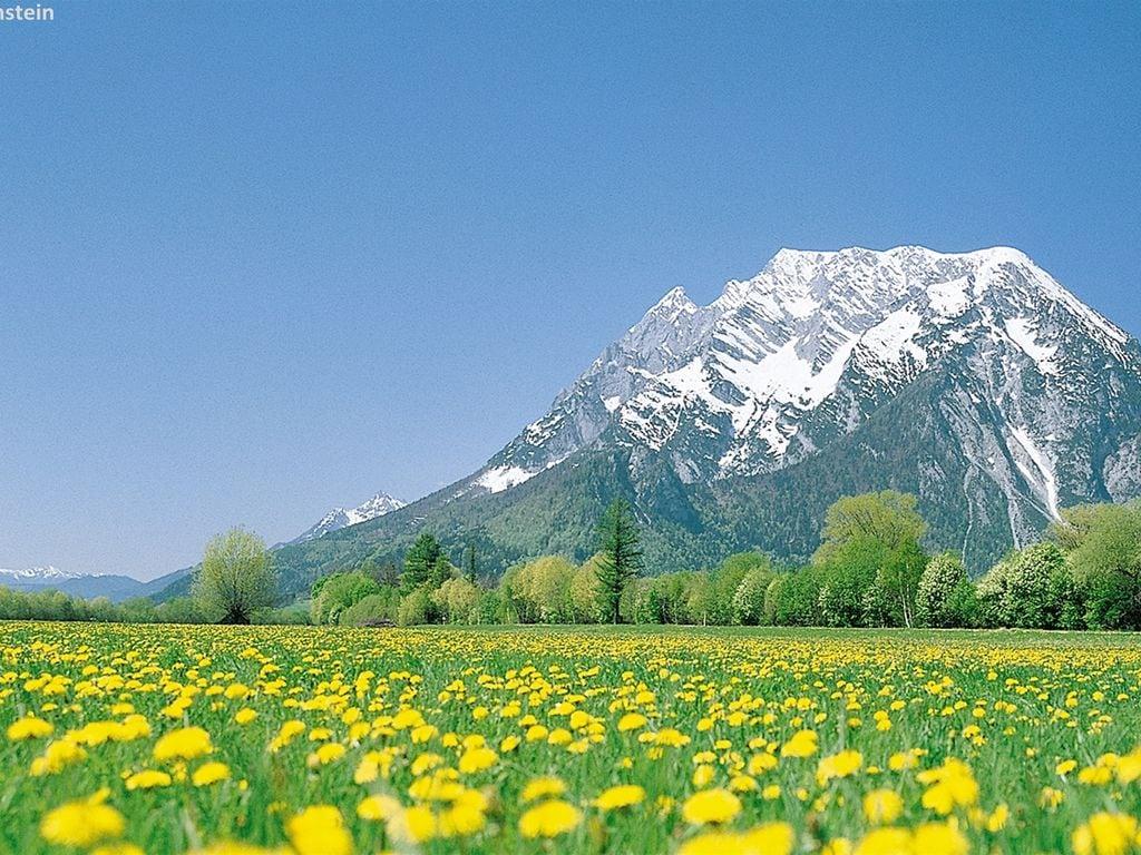 Ferienwohnung Modernes Apartment in der Nähe des Skigebietes in Schladming (2584248), Rohrmoos-Untertal, Schladming-Dachstein, Steiermark, Österreich, Bild 17