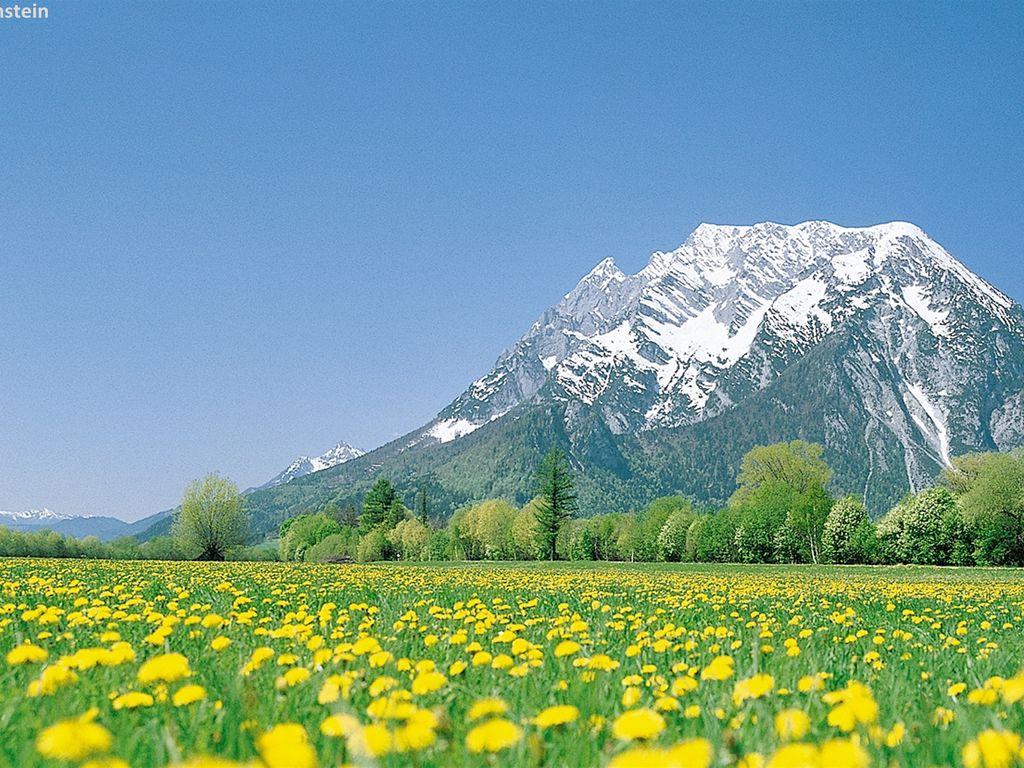 Ferienwohnung Modernes Apartment in der Nähe des Skigebietes in Schladming (2584291), Rohrmoos-Untertal, Schladming-Dachstein, Steiermark, Österreich, Bild 14