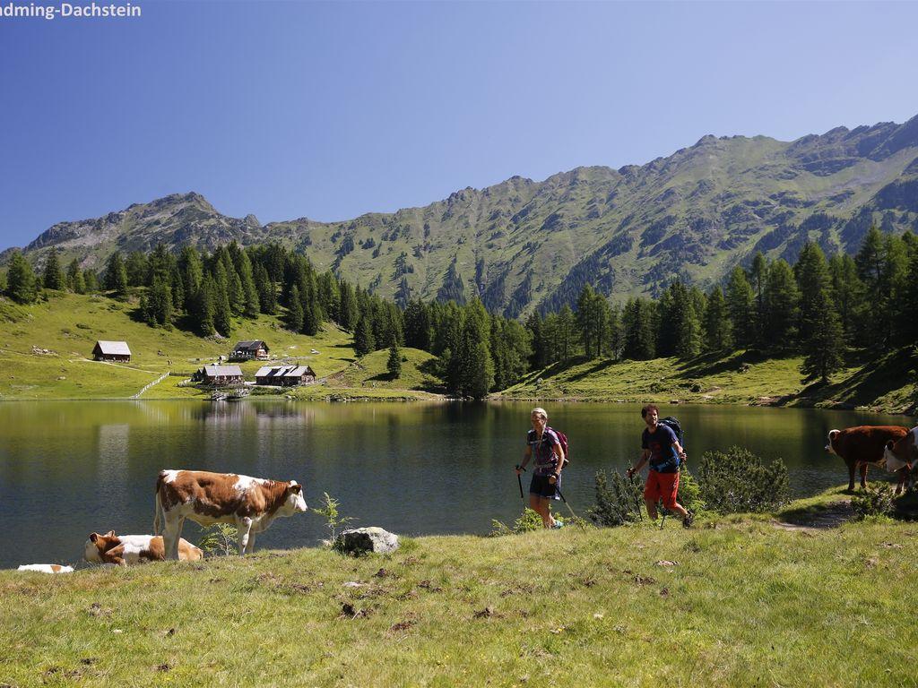 Ferienwohnung Luxuriöses Ski-in-Ski-out-Apartment mit eigener Sauna, direkt an der Piste (2584303), Rohrmoos-Untertal, Schladming-Dachstein, Steiermark, Österreich, Bild 15