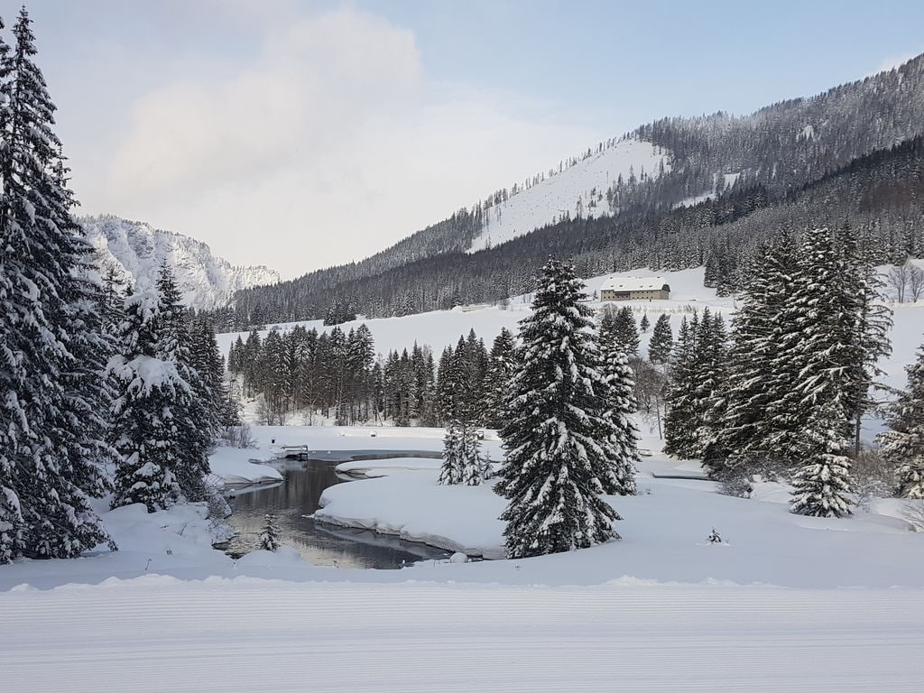 Holiday house Moarhof (2593170), Hohentauern, Murtal, Styria, Austria, picture 37