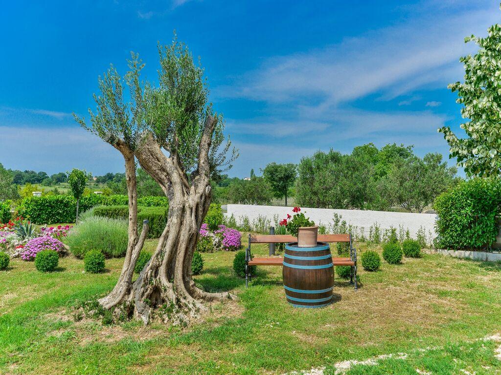 Ferienhaus Holiday home Olive garden (2593163), Pristeg, , Dalmatien, Kroatien, Bild 9