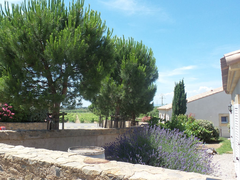 Maison de vacances Moderne Villa mit privatem Pool in Montburn-des-Corbieres (2594659), Azille, Aude intérieur, Languedoc-Roussillon, France, image 24