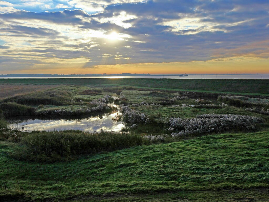 Ferienhaus Water Resort Oosterschelde 9 (2602475), Wemeldinge, , Seeland, Niederlande, Bild 13