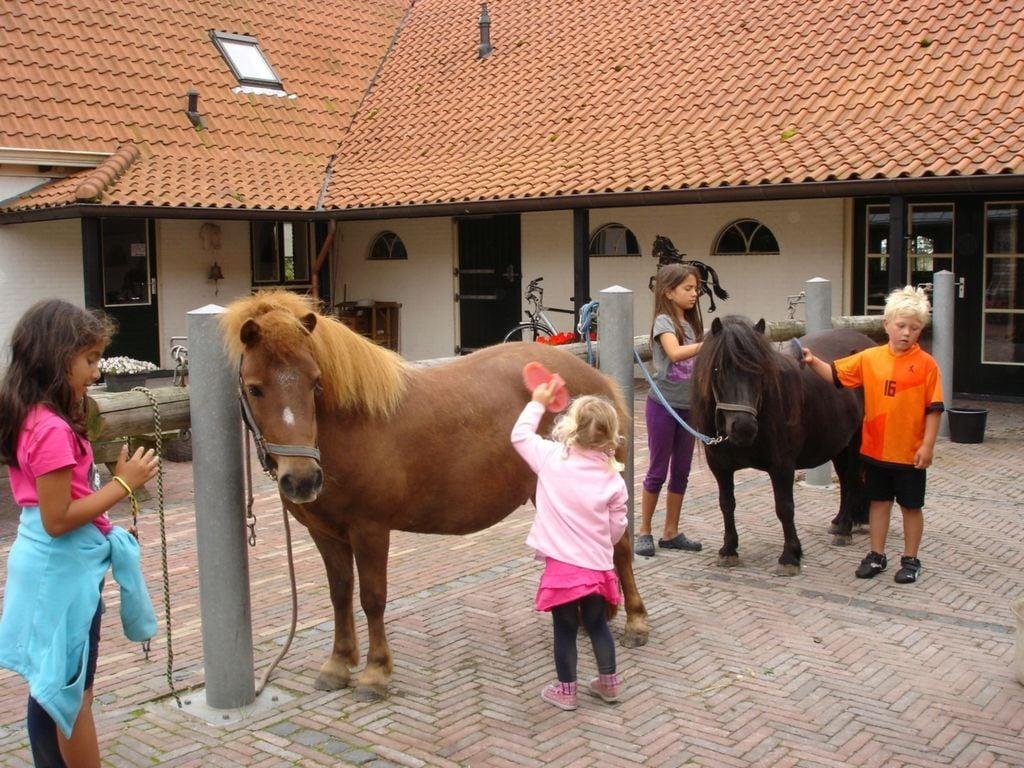 Ferienhaus De Hakehoeve (2605038), Ellemeet, , Seeland, Niederlande, Bild 37