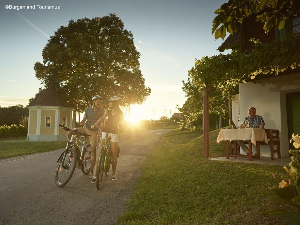 Ferienwohnung Pannonia G01 (2631183), Lutzmannsburg, Sonnenland Mittelburgenland, Burgenland, Österreich, Bild 22