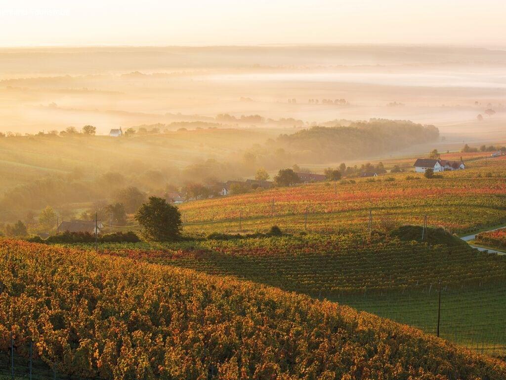 Ferienwohnung Pannonia M04 (2631176), Lutzmannsburg, Sonnenland Mittelburgenland, Burgenland, Österreich, Bild 21