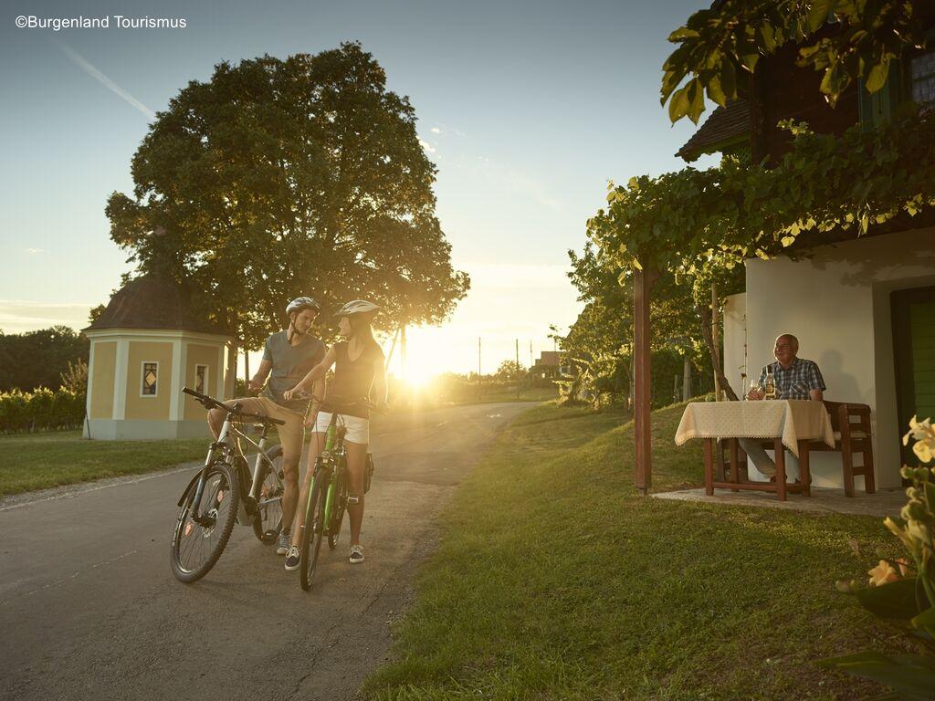 Ferienwohnung Pannonia L03 (2631171), Lutzmannsburg, Sonnenland Mittelburgenland, Burgenland, Österreich, Bild 22