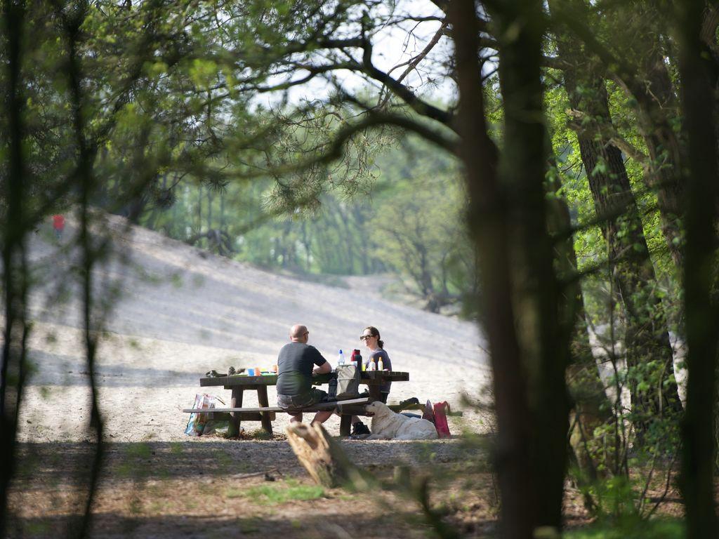 Ferienwohnung Zeltlodge mit Sanitäranlagen an Bedafse Bergen (2643474), Bedaf, , Nordbrabant, Niederlande, Bild 17