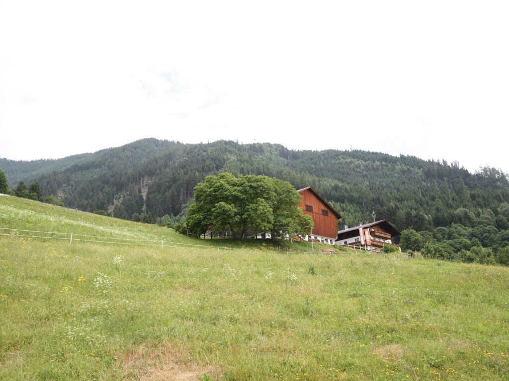Appartement de vacances Bamerhof (2644605), Stuhlfelden, Pinzgau, Salzbourg, Autriche, image 2