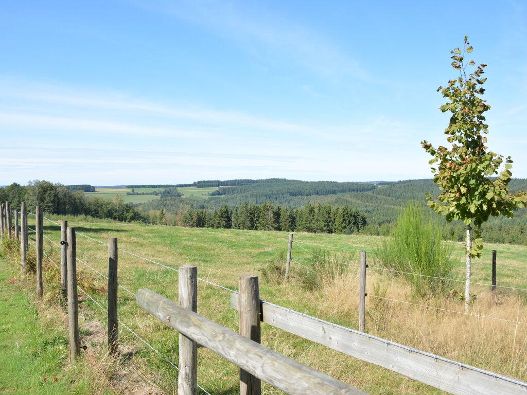 Ferienhaus Luxuriöses tierfreundliches Chalet in Bièvre in Waldnähe (2685050), Bièvre, Namur, Wallonien, Belgien, Bild 9