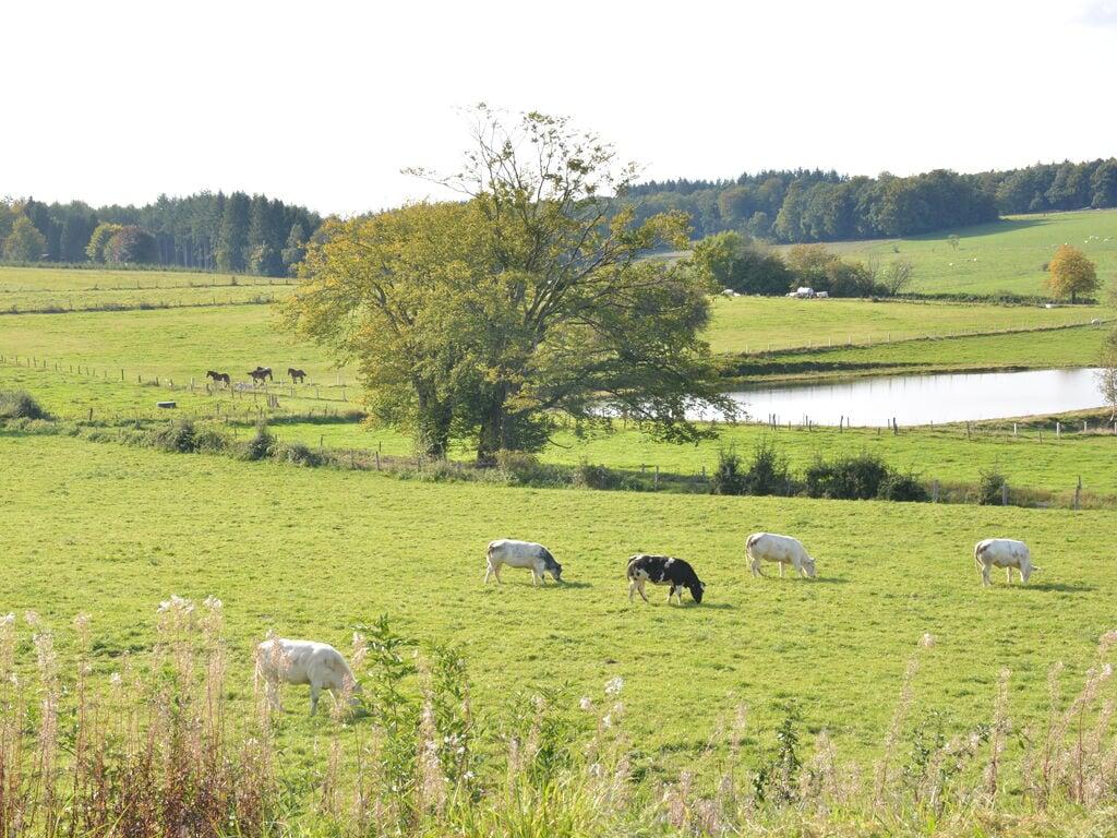 Ferienhaus Luxuriöses tierfreundliches Chalet in Bièvre in Waldnähe (2685050), Bièvre, Namur, Wallonien, Belgien, Bild 21