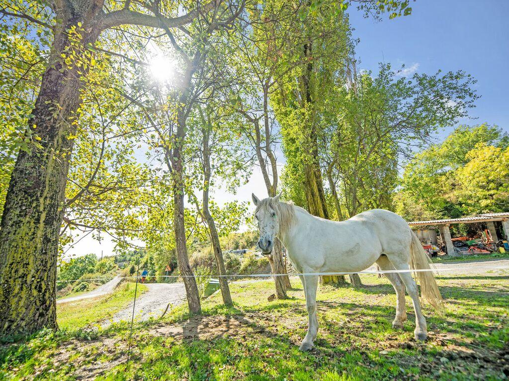 Ferienwohnung Bergblick-Wohnung in Ardanué mit Garten (2833741), Ardanuy, Huesca, Aragonien, Spanien, Bild 17