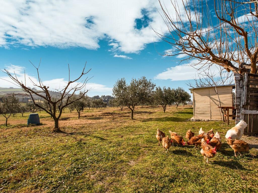 Ferienhaus Malerisches Bauernhaus in Plagiari mit Heizung (2734559), Epanomi, Thessaloniki, Makedonien, Griechenland, Bild 34