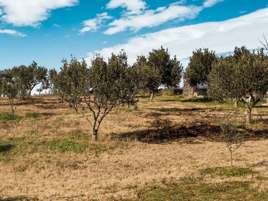 Ferienhaus Malerisches Bauernhaus in Plagiari mit Heizung (2734559), Epanomi, Thessaloniki, Makedonien, Griechenland, Bild 36