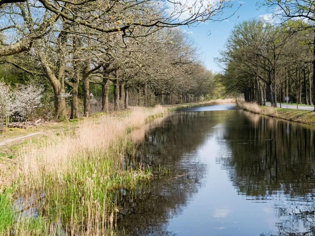 Ferienhaus Abgelegener Bungalow in Laag-Soeren mit Garten (2752818), Laag Soeren, Veluwe, Gelderland, Niederlande, Bild 24