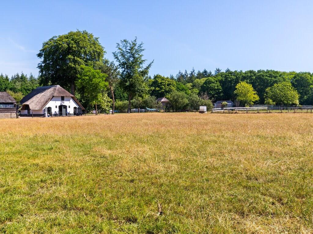 Ferienhaus Abgeschiedenes Ferienhaus in Garderen mit Jacuzzi (2795552), Oud Milligen, Veluwe, Gelderland, Niederlande, Bild 33