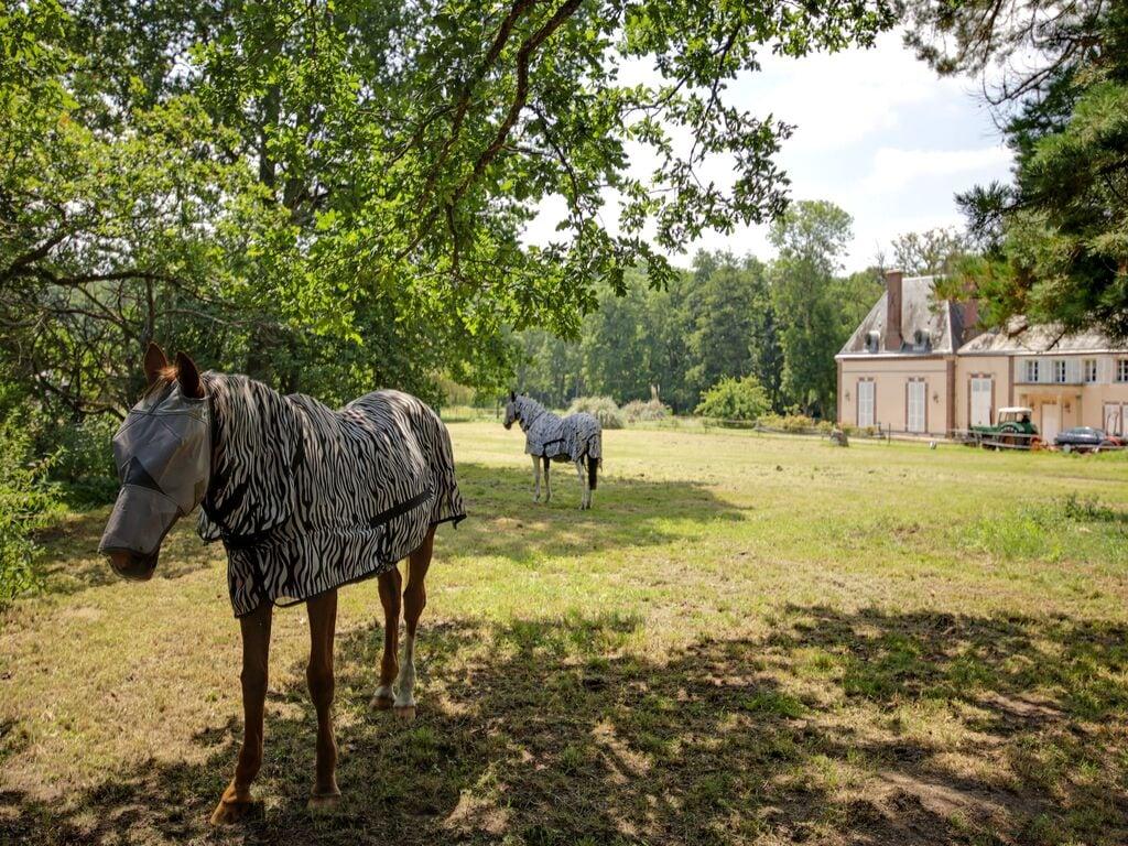 Ferienhaus Charmantes Ferienhaus in Raizeux in der Nähe von Forest (2870644), Émancé, Yvelines, Paris - Ile de France, Frankreich, Bild 23