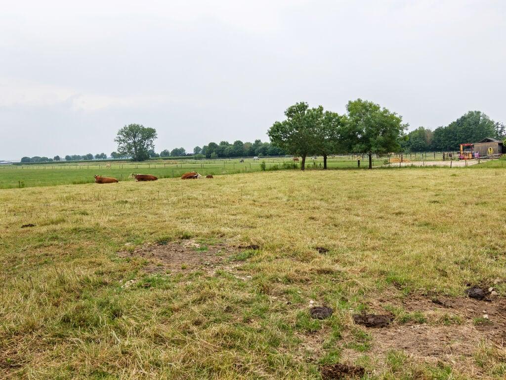 Ferienhaus Gemütliches, komfortables Ferienhaus beim Bauern in Horssen mit Garten (2753724), Horssen, Rivierenland, Gelderland, Niederlande, Bild 32