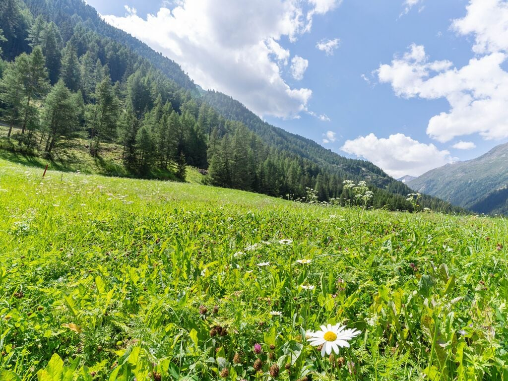 Ferienwohnung mit Bergblick und Balkon in Zwieselstein (2808992), Sölden (AT), Ötztal, Tirol, Österreich, Bild 29