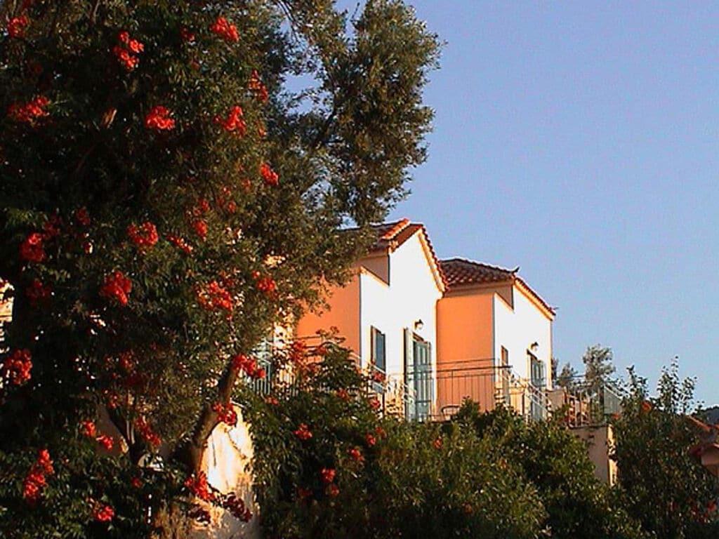 Ferienwohnung Malerische Wohnung auf der Insel Lesbos mit Pool (2795456), Petra (GR), Lesbos, Ägäische Inseln, Griechenland, Bild 7