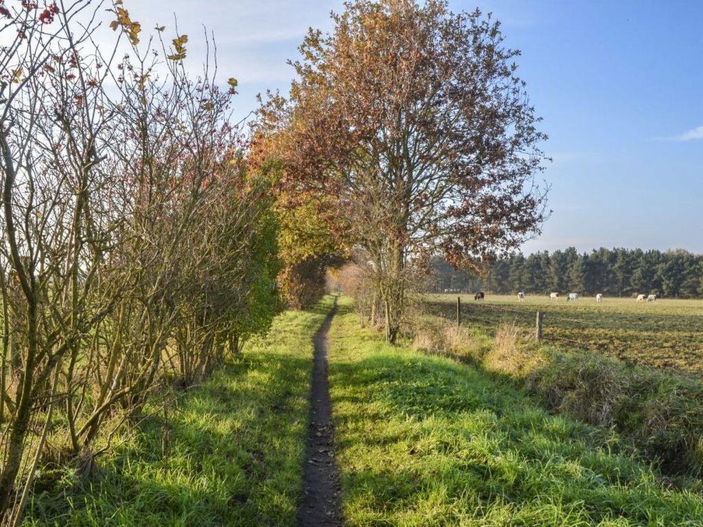 Ferienhaus Schönes Ferienhaus in Putten mit einem schönen großen Garten (2802230), Putten, Veluwe, Gelderland, Niederlande, Bild 19