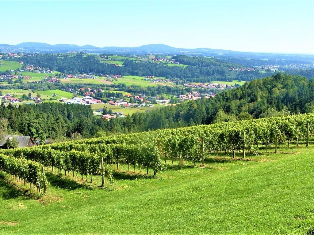 Ferienwohnung Schöne Wohnung in Krottendorf-Gaisfeld in Weinbergen (2832741), Krottendorf-Gaisfeld, Weststeiermark, Steiermark, Österreich, Bild 27
