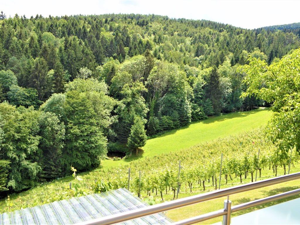 Ferienwohnung Schöne Wohnung in Krottendorf-Gaisfeld in Weinbergen (2832741), Krottendorf-Gaisfeld, Weststeiermark, Steiermark, Österreich, Bild 29