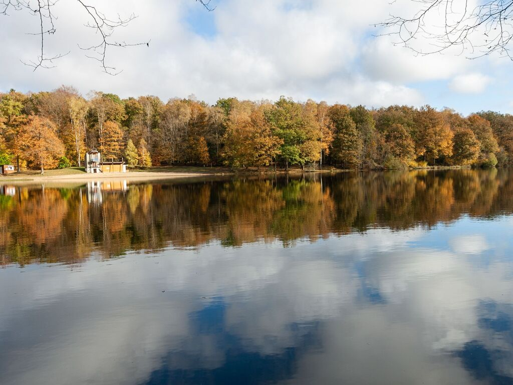Ferienhaus Charmantes Ferienhaus Nummer 10 in Signy-le-Petit im Herzen der Natur (2868530), Signy le Petit, Ardennen (FR), Champagne-Ardennen, Frankreich, Bild 25