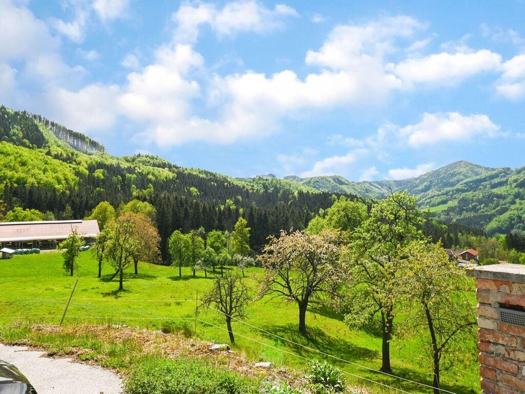 Ferienwohnung Verlockende Wohnung in Scheibbs bei Erlauf (2889327), Scheibbs, Mostviertel, Niederösterreich, Österreich, Bild 5