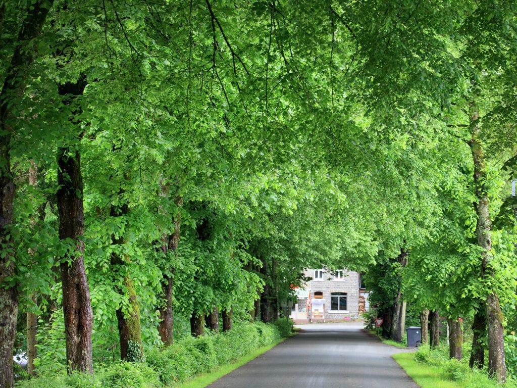 Ferienhaus Orangerie (60143), Marcourt, Luxemburg (BE), Wallonien, Belgien, Bild 36