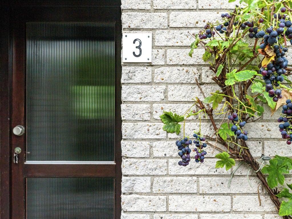 Ferienhaus Idyllisches Ferienhaus im Kamperland mit Garten (61462), Stroodorp, , Seeland, Niederlande, Bild 34
