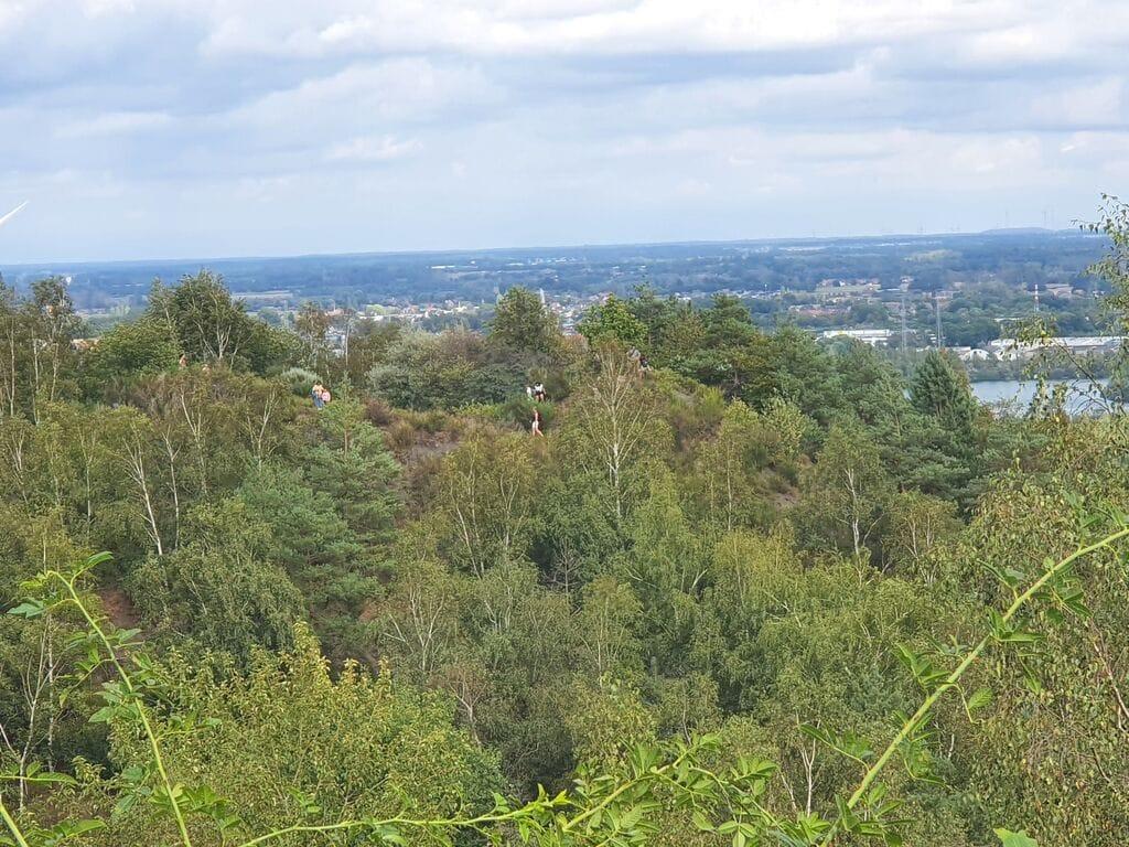 Ferienhaus Gemütliches Chalet in Lanklaar mit nahegelegenem Wald (59984), Dilsen-Stokkem, Limburg (BE), Flandern, Belgien, Bild 20