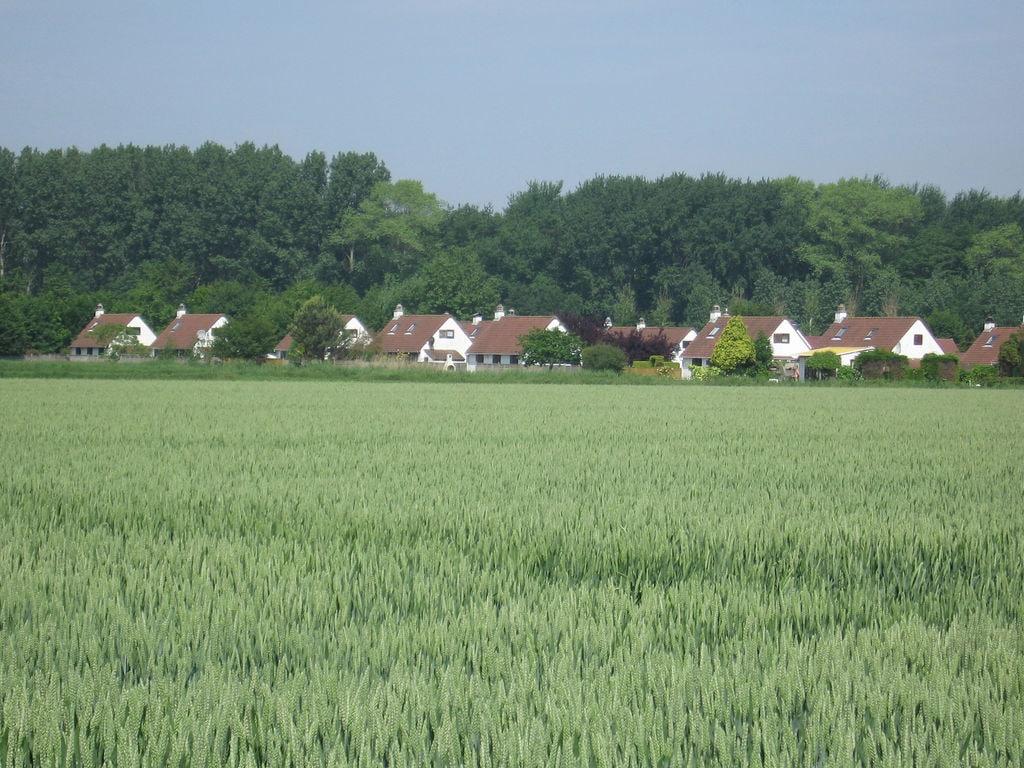 Ferienhaus Duinendaele 2 (60460), Adinkerke, Westflandern, Flandern, Belgien, Bild 12
