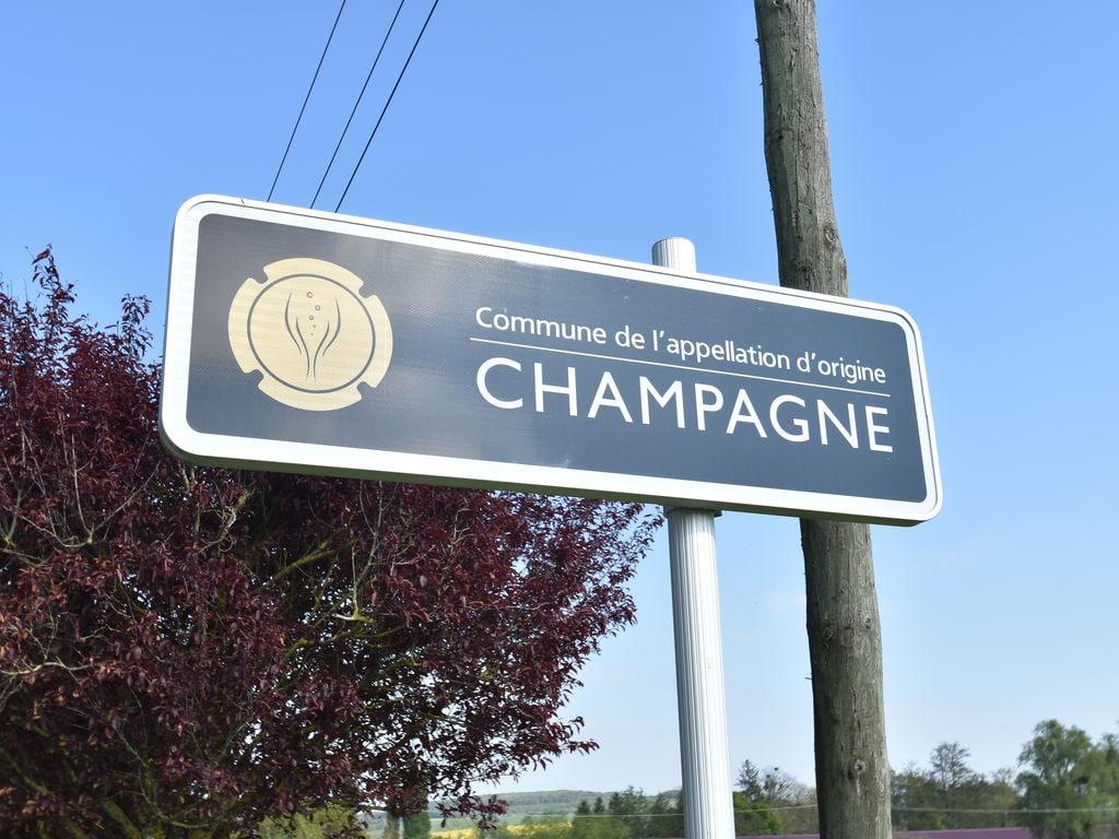 Ferienhaus La Centième (255902), Bligny, Aube, Champagne-Ardennes, Frankreich, Bild 36
