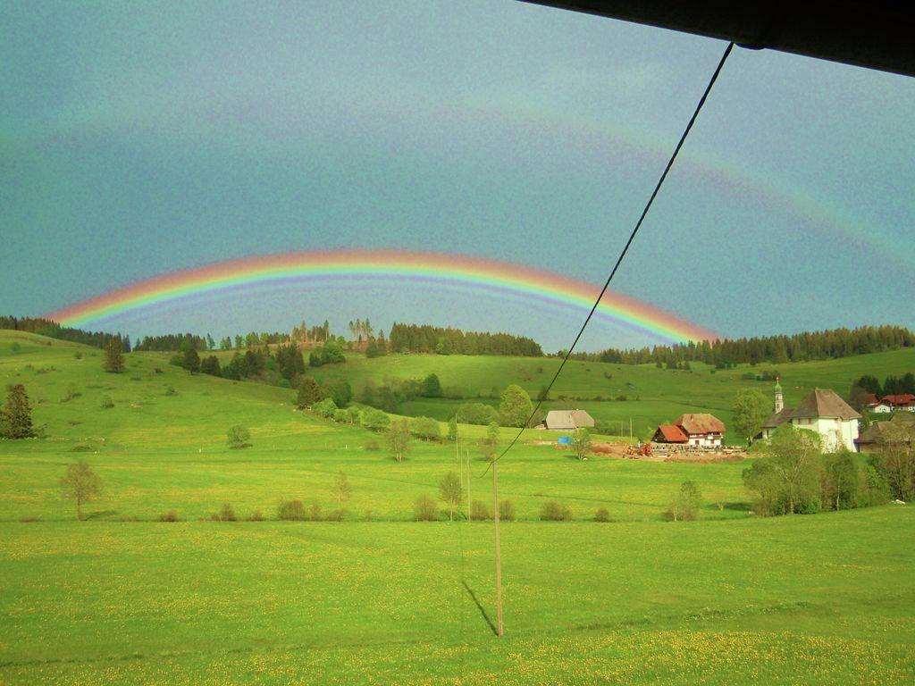 Ferienwohnung Gemütlicher Bauernhof in Unteribach, Deutschland mit Balkon (255396), St. Blasien, Schwarzwald, Baden-Württemberg, Deutschland, Bild 16