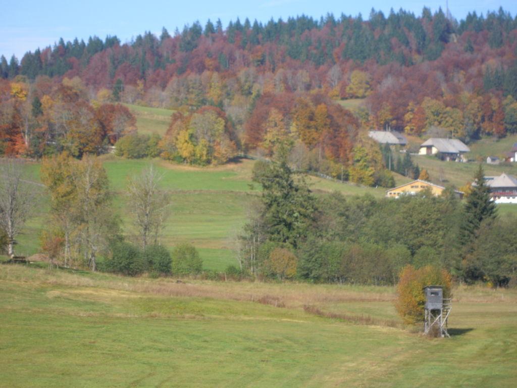 Ferienwohnung Gemütlicher Bauernhof in Unteribach, Deutschland mit Balkon (255396), St. Blasien, Schwarzwald, Baden-Württemberg, Deutschland, Bild 20
