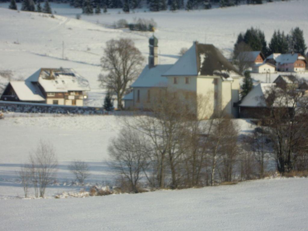 Ferienwohnung Gemütlicher Bauernhof in Unteribach, Deutschland mit Balkon (255396), St. Blasien, Schwarzwald, Baden-Württemberg, Deutschland, Bild 24