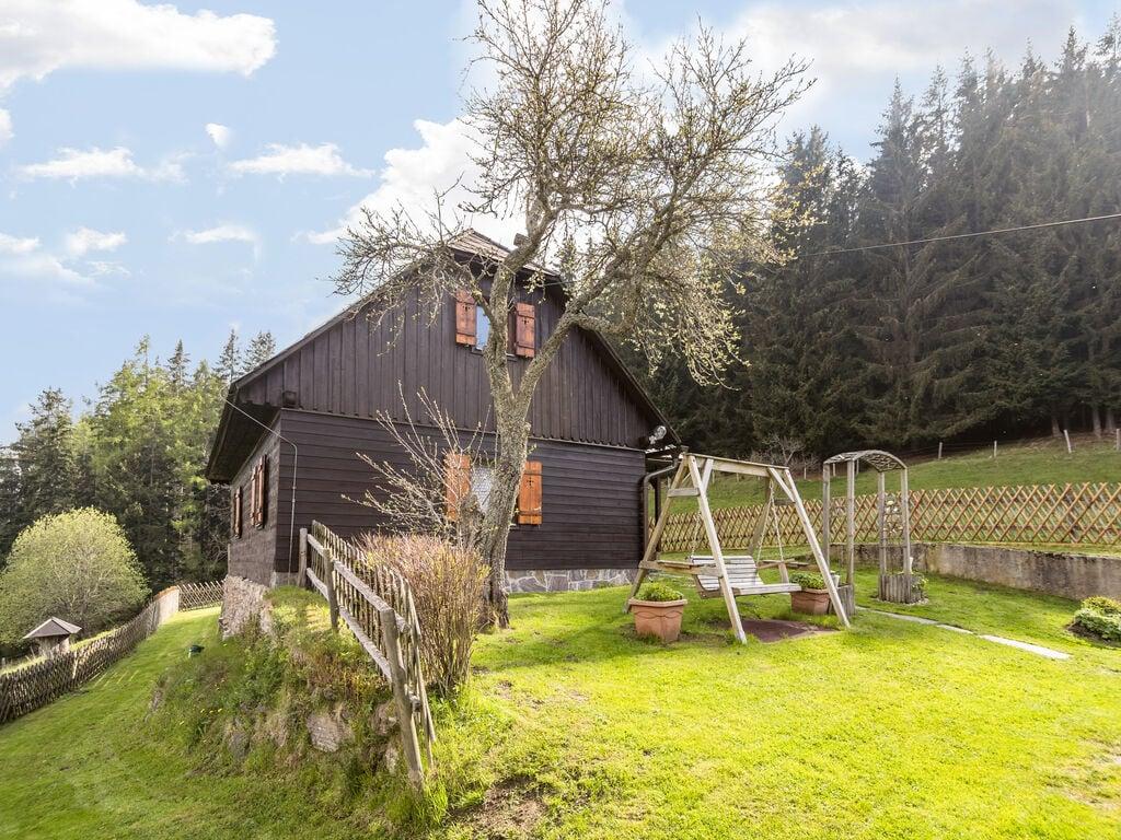Ferienhaus Sonniges Ferienhaus in Kalchberg mit eigenem Garten (254173), Bad St. Leonhard im Lavanttal, Lavanttal, Kärnten, Österreich, Bild 22