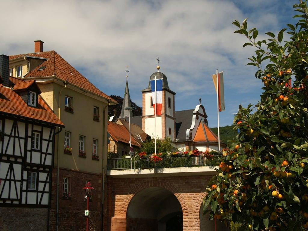 Ferienhaus Feriendorf Waldbrunn 1 (255330), Waldbrunn, Odenwald (Baden-Württemberg), Baden-Württemberg, Deutschland, Bild 32