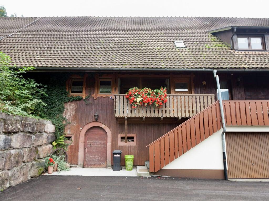 Ferienwohnung Danielshof (255348), Bad Rippoldsau-Schapbach, Schwarzwald, Baden-Württemberg, Deutschland, Bild 3