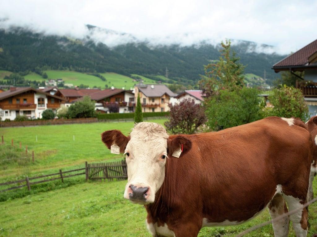 Ferienwohnung Moderne Ferienwohnung in Skigebietsnähe im Salzburger Land (253579), Altenmarkt im Pongau, Pongau, Salzburg, Österreich, Bild 17
