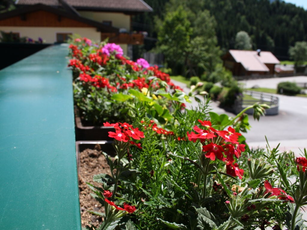 Maison de vacances Höring (253612), Goldegg, Pongau, Salzbourg, Autriche, image 23